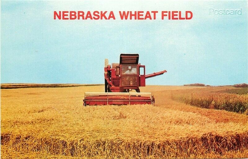 Zoo Nebraska - Wheat Field Postcard