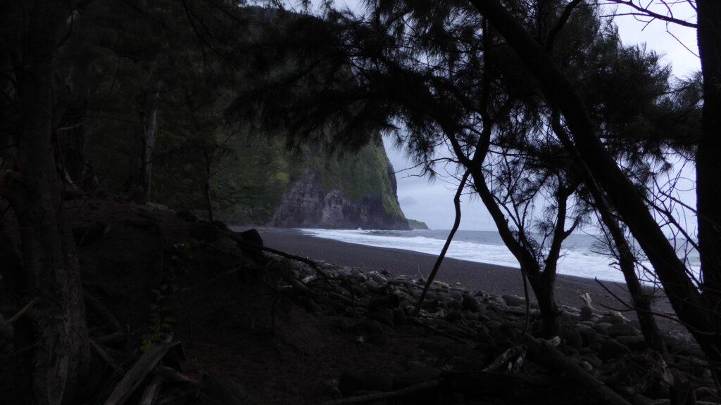 Waipi'o Valley beach view