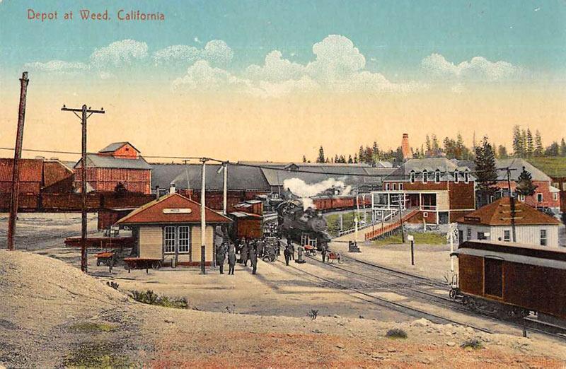 Weed California Postcard